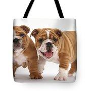 Bulldog Puppies Tote Bag