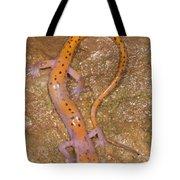 Cave Salamander Tote Bag