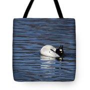 Common Goldeneye Tote Bag