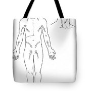 Direction Of Lymph Flow Tote Bag