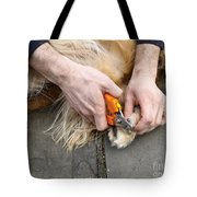 Dog Grooming Tote Bag