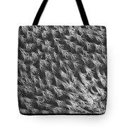 Gecko Foot Pads Tote Bag