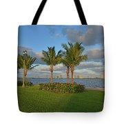 6- Kelsey Park Tote Bag