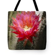 Red Cactus Flower Tote Bag