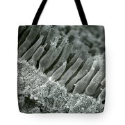 Rods And Cones In Retina Tote Bag by Omikron