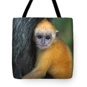 Silvered Leaf Monkey Trachypithecus Tote Bag