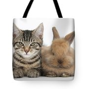 Kitten And Rabbit Tote Bag