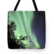 Aurora Borealis Above The Trees Tote Bag