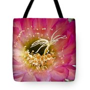 Dark Pink Cactus Flower Tote Bag