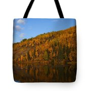 Fall Beauty Tote Bag