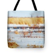 7 Swans Swimming  Tote Bag