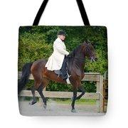 Class 31  Open Saddle Seat Pleasure  Tote Bag