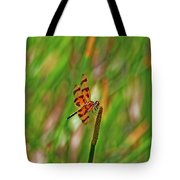 8- Dragonfly Tote Bag