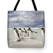 King Penguin Aptenodytes Patagonicus Tote Bag