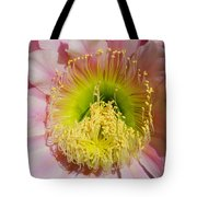 Pink Cactus Flower Tote Bag