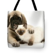 Puppy And Kitten Tote Bag
