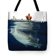 Whale Shark Feeding Under Fishing Tote Bag