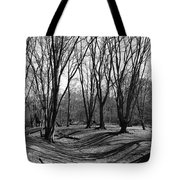 Ambresbury Banks Bronze Age Fortification Tote Bag