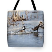 Hooded Merganser Tote Bag