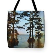 Reelfoot Lake Tote Bag