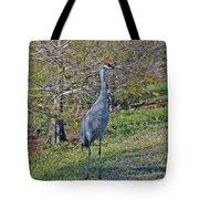 9- Sandhill Crane Tote Bag