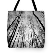 Trees In Epping Forest Tote Bag