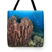 A Barrel Sponge Attached To A Reef Tote Bag