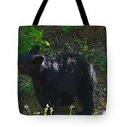 A Bear Cub Tote Bag