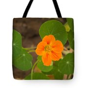 A Beautiful Orange Trumpet Shaped Flower With Green Leaves Tote Bag