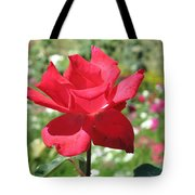 A Beautiful Red Flower Growing At Home Tote Bag