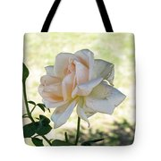 A Beautiful White And Light Pink Rose Along With A Bud Tote Bag