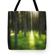 A Beautiful Wooded Area Tote Bag
