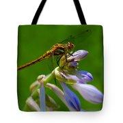 A Beauty On A Beauty Tote Bag