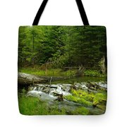A Beaver Dam Spilling Over Tote Bag