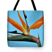 A Bird By The Pool Tote Bag