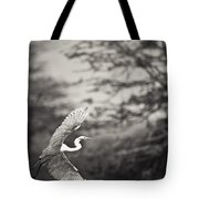 A Bird With A Large Wing Span Takes Tote Bag