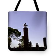 A Bird's View Tote Bag