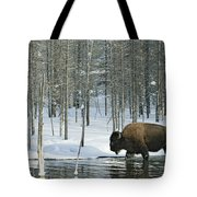 A Bison Stands In A Cold  Stream Tote Bag