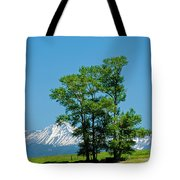 A Bit Of Shade Tote Bag