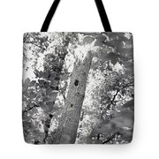 A Black And White View Of The Interior Tote Bag