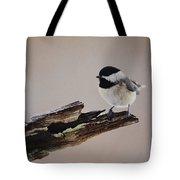 A Black-capped Chickadee Tote Bag