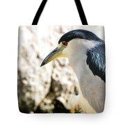 A Black-crowned Night Heron  Tote Bag