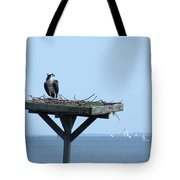 A Boat Watching Osprey Tote Bag