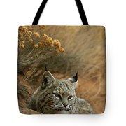 A Bobcat Tote Bag
