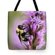 A Bombus Bumblebee On A Tote Bag