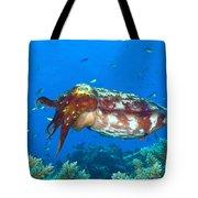 A Broadclub Cuttlefish, Kimbe Bay Tote Bag