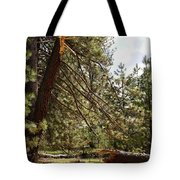 A Broken Tree Tote Bag