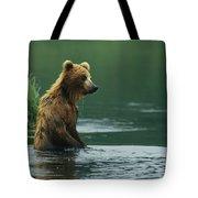 A Brown Bear Standing In Water Hunting Tote Bag