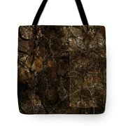 A Brown Study Tote Bag