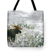 A Bull Moose On A Snow Covered Hillside Tote Bag